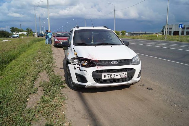 ВСамарской области шофёр  сбил дедушку свнуками