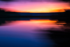 Candy Colored Dreams (haddartist) Tags: water waterside pond lake calm still glassy reflection reflecting trees branches shore shoreline treeline silhouette silhouetted sky sunset dusk evening color colorful vibrant blur slowshutter longexposure pan panning virginiabeach virginia artsy artistic contemporary