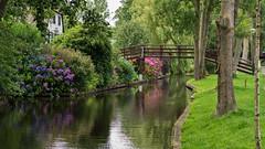 Giethoorn Holland (vanderwoud1) Tags: giethoorn venice nikon d3300 50mm travel holland nederland tuin tuinen overijssel bridge natuur bloemen flowers dutch vakantie dorp town flora travelspotsnederland