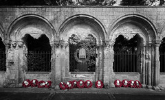 War Memorial (hanley27) Tags: war memorial second division deans park york canon1740mm l f4