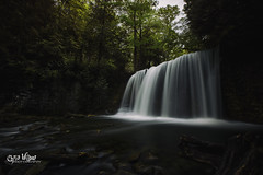 Summer at Hogg's (wilbias) Tags: mist ontario canada landscape water nature river travel motion summer long waterfall falls exposure stream outdoors wet flesherton hoggs