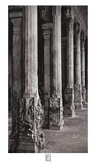 Colonnade (krishartsphotography) Tags: krishnansrinivasan krishnan srinivasan krish arts photography fineart monochrome pillars colonnade renga vilas mandapa srirangam trichy tiruchirapalli tamilnadu india