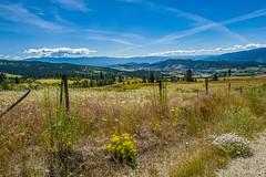 X'd (EXPLORE) - 2320 - (zayaspointofviewphotography1) Tags: canada lake okanagan kelowna british columbia nature wildflowers colors bluesky