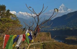 NEPAL, Himalaya-Gebirge,  Annapurna-Massiv von Pokhara aus  gesehen,  16207/8502