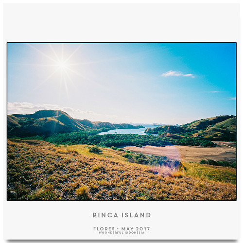 Rinca Island 2