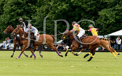 © 2017 Photographs by Robert Piper- All Rights Reserved 716 _ (Ham Polo Club) Tags: jacaranda challengematch vendetta 2017the london polo club tw107ah england gbr