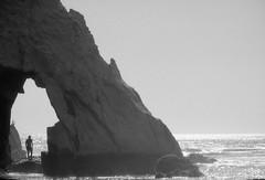 O))))11 (gustavo coronado) Tags: film 35mm fujineopanss blackandwhite blancoynegro cheapscan nikonf100 chile loberia carahue oceanopacifico cochayuyo lafkenmapu