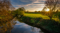 River Medway (SpectrumLight) Tags: landscape river water waterscape reflections kent england southeastengland medway rivermedway flickr scenery scenic nature sunlight sunset sunstar sunsetlight countryside field sonya7ii ilce7m2 sony fe1635mmf4zaoss penshurst rural golden