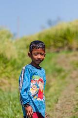 IMG_0599 (Ela&Piotr) Tags: bali indonesia indonezja jatiluwih ricefields