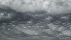 Onweerswolken-2690 (Josette Veltman) Tags: onweer regen wolken clouds thunder rain weerfoto weer wether nature contrast grey grijs
