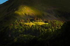 Fleeting Light (Explored) (Joe Hayhurst) Tags: landscape light trees lakedistrict cumbria england nikon d610 keldas