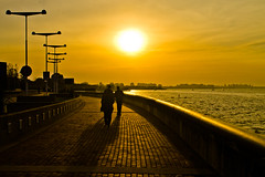 Sunset of memory (Wal Wsg) Tags: sunsetofmemory atardecerdelamemoria parquedelamemoria atardece tarde sunset ocaso sol sun water agua sombra shadow canoneosrebelt3 argentina
