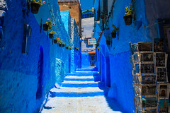 IMG_4625 (FocusForFocusSake) Tags: travel morroco canon sunset chefchaouen marrakech tanger canon550d blue animals cat dog colors desert sand city people medina friendship sky mountains cars camel kids textures tea palace mosque donkey woman lamp green nature road