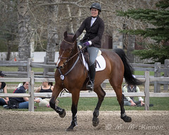 Spruce Meadows May Classic (tallhuskymike) Tags: sprucemeadows horse mayclassic equestrian showjumping jumping 2017 calgary alberta action event outdoors