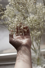 The Distance Between Us Pt. II (Miss Marisa Renee) Tags: marisarenee digital canon flowers floral babys breath 2016 december december2016 diptych two part vertical distance shallowdepthoffield canon5dmarkii hand wrist shadow shadows palm vase