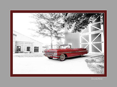A red 59 (david.horst.7) Tags: car auto isolated red automobile 1959 chevy chevrolet impala convertible barn