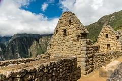 Machu Picchu -_DSC0588