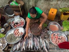 Fish Market in Myanmar
