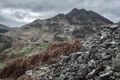 Scree and Bracken, Dundurn (S i m o n . M a y s o n) Tags: dundurn st fillans perthshire mountain landscape scree bracken