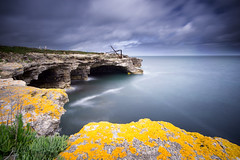 (Claire*Marsh) Tags: portland bill dorset uk southwestcoastpath cliff rocks moss plant yellow sea water le longexposure crane sonydigitalfilterapp ndfilter 10stop 10stopper ndgrad colour sonya6000 samyang12mm wideangle