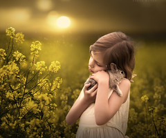 Tender (sveta_butko) Tags: field girl beauty sunlight summer animal cute love child young tender little childhood hugs rabbit bunny