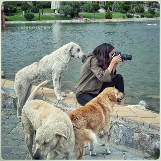 The photographer and assistants..