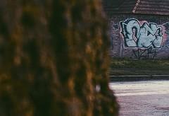 (Macizos Krew) Tags: mzk mz macizocru macizoskru mzsk mzskru bombi style muteee1 mutmutmut siempre blanco culitos flecha zonasur macizooo represent insta moment secuenciaaa logchamps plaza rioba barrio