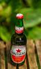 Bintang Beer - Indonesia's No.1 Beer (y.mihov, Big Thanks for more than a million views) Tags: bintang beer indonesias no1 bierbirrëbeerehpivogaragardoapivabeerbierbiracervesajijpijiuølbeer bottle cervisiaalusbbiyabirbiyar jadabjobiapiwocervejasirbisacerveza啤酒beeraבארשכרבירהбирапивоლუდიbiiruビールビア麦酒 alebieroõluolut alcohol garden green glass sonyalpha minolta