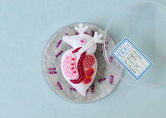 Daphnia Brooch (hine) Tags: daphnia brooch pin petridish biology microbe plankton handmade hinemizushima artshow exhibition specimen japan ranbu toy 標本の王国 水島ひね 微生物 プランクトン 展示会 展覧会 グループ展 大阪