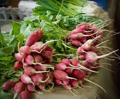 Radish Shapes (danbruell) Tags: farmersmarket meridian mall spring food radish red spicy tasty