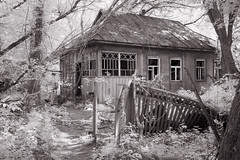 Dilapidated dacha, Chernobyl (Sean Hartwell Photography) Tags: infrared ir blackandwhite monochrome dacha cottage forest zalissia chernobyl pripyat nuclear powerstation accident disaster fallout radiation radioactive decay abandoned