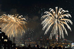 4th of July 2017 Macy's Fireworks-75 (Diacritical) Tags: brooklyn nycmacys nikond4 pattern 70200mmf28 30secatf71 july42017 85009pm f71 230mm 4thofjuly fireworks macysfireworks nyc night skyline