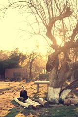 (Lucas Pedruzzi) Tags: pedruzziphotografic pedruzzisphoto photopedruzzi photoscanon photobrazil photolucaspedruzzi americadelsur amériquedusud américadosul america americadosul southamerica südamerika sulriograndense southbrazil surbrazil fotoslucaspedruzzi fotosbylucaspedruzzi gaúcho gaúcha lucaspedruzzi landscape latinoamérica latinoamerica mercosul nicephoto natureza natur naturaleza natura brasil brazil ciudad cidadegaúcha city cidadebrasileira città cidade cityofbrazil capitalgaúcha riograndedosul rs imagem interiorgaúcho interiorbrasil canon 70d eos70d