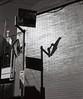 反射と影の朝 (Yuri Yorozuna / 萬名 游鯏(ヨロズナ)) Tags: mamiyarb67professionals mamiyarb67 mamiyasekorc138f90mm アナログ写真 analogphotography フィルム写真 filmscanning フィルムスキャニング フィルムスキャン モノクロ 白黒 monochrome blackandwhite fujifilmneopan100acros 若松河田 wakamatsukawada 影 shadow カーブミラー 鏡 ミラー mirror trafficmirror convextrafficmirror drivewaymirror roadmirror roadsafetymirror curvedmirror 反射 reflection 映り込み 映りこみ 壁 wall 新宿区 shinjukuward 東京都 東京 tokyo japan 6x7 6×7