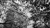 (UrvishJ) Tags: ©urvishjoshiphotography urvishjoshi urvishjoshiphotography sell buy stock stockimage online images pictures stockpicture indianpicture indianphoto stockphoto sociology patterns urban oldurban retro retrourban life lifeinstreets streetphotography heritage old oldstructure indianness symmetry art past history age senile architecture ancientarchitecture urbanscape culture travel travelogue travelphotography onlineimages postcard getty gettyimages gettycontributor vibrantindia incredibleindia westernindia silhouettes portraits indianexhibits fuji fujix100t fujifilm monochrome blacnandwhite bw