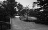 Tierpark 5 (FSR Photography) Tags: canon canon400d canondslr sw schwarzweis schwarzweiss spring tierpark trees travel bw blackandwhite blackwhite bäume monochrome monochrom frühling sonne sun fsr fsrphotography