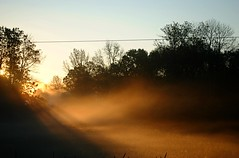 Sunrise in Random Lake, Wisconsin (Cragin Spring) Tags: wisconsin wi unitedstates usa unitedstatesofamerica midwest sunrise morning sun trees randomlake randomlakewi randomlakewisconsin fog