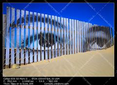Eyes on the dune (__Viledevil__) Tags: beach beauty nature blue color image vibrante colors day dry dune eyes heat horizon travel landscape nobody outdoors pattern sand season sky summer sunlight textured destinations vibrant wave wood yellow cádiz españa