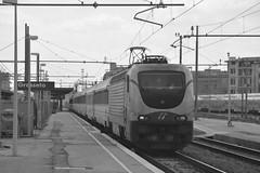 grosseto marzo 2017 #8 (train_spotting) Tags: grosseto trenitalia divisionepasseggeri frecciabianca ic510 intercity510 e402b172 e402b1727ti nikond7100