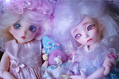 Sugar and spice... (assamcat) Tags: bjd abjd fairyland mio rendia littlefee pink bunnies canon macro