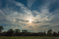 Sundogs (thefisch1) Tags: sundog sun sky horizon tree kansas nikon