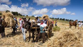 Sagra del grano - Tangi TP - Italy