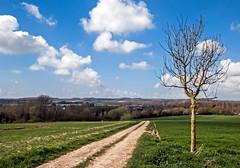 DSC_6815_ Vue sur la vallée de la Lys