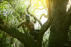 Black Panther 4 - Color Version (Philip Bonneau) Tags: blackpanther man shirtless african marvel marvelcomics comicbook comicbookcharacter superhero hero jungle outdoors cat panther claws treeclimbing tree woods daytime mask africanamerican