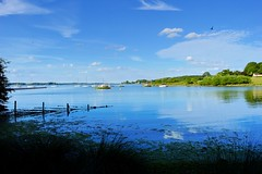The moorings (braddalad123) Tags: outdoor landscape rutland rutlandwater lake reservoir water summer yacht yachts moorings fence bay sky clouds beautiful tranquil serene reflections nature nikon d3200 1855mm