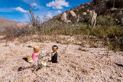 DSC03335 (eddyizm) Tags: gothefuckoutside sandiegocounty a700 anzoborrego california desert eastjesus eddyizm eduardocervantes neverstopexploring slabcity sonya700 sonyalpha