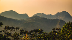 Light and foggy in the evening (Flutechill) Tags: mountain nature asia landscape sunset hill outdoors fog sunrisedawn scenics travel tropicalclimate morning thailand tree beautyinnature chinaeastasia dawn sky forest chiangmai doiangkhang