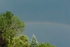 Hail to the rainbow! (docoellerson) Tags: weather hail summer rain thunderstorm rainbow trees