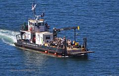 4650_Seafair Pirates 2017 (lg evans Maritime Images) Tags: maritimeimages ©lgevans lgevans lge seafairpirates 2017 landingday landingcraft globaldivingandsalvage waterfront harbor portofseattle cannonshot boom seafair seattlewa