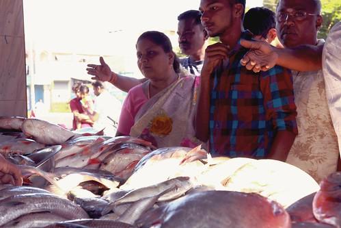 Thumbnail from Fish Market